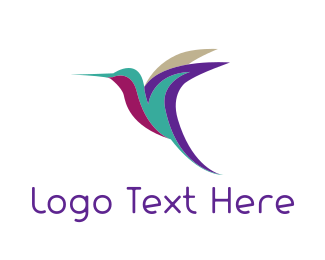 Colibri - Colorful Hummingbird logo design