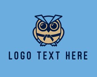 Karate Owl Mascot Logo