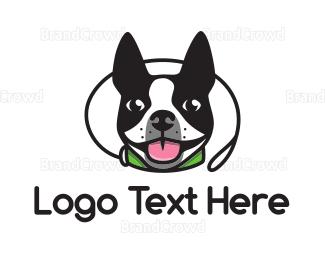 Cute Boston Terrier logo design
