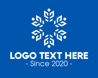 December - White Radial Snowflake logo design