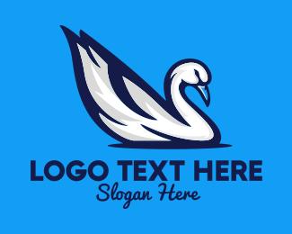 Swan - White Swan logo design