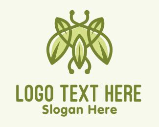 """""""Green Bug Leaf"""" by spayro"""