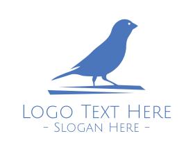 Little - Small Blue Bird logo design