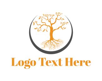 Dainty - Orange Tree logo design