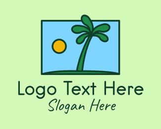 Coconut Tree - Tropical Coconut Tree logo design