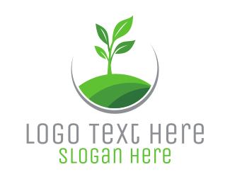Stem - Plant Circle logo design