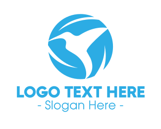 Skyblue - Blue Hummingbird logo design