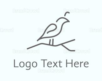 Feather - Grey Bird logo design