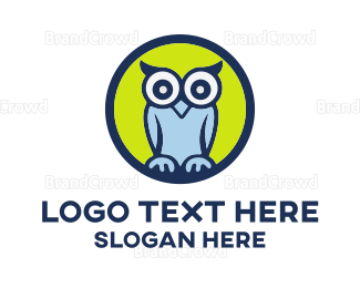 School - Cute Blue Owl Cartoon logo design