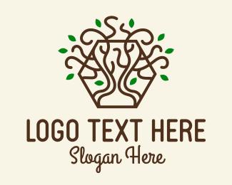 Growing - Growing Tree Hexagon  logo design