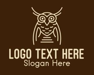Studying - Wise Owl Bird  logo design