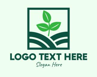 Agritech - Organic Plant Seedling logo design