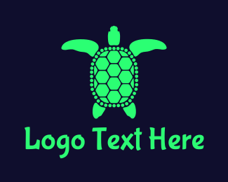 Tortoise - Green Sea Turtle logo design