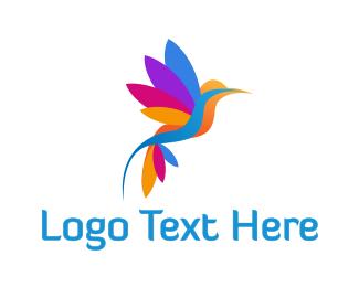 Sparrow - Colorful Hummingbird logo design