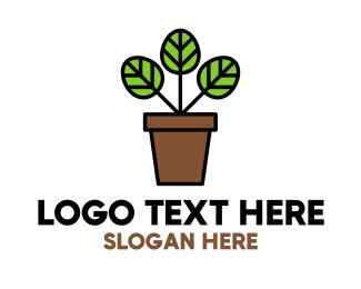 Palm Pot Logo