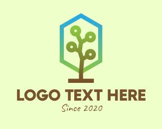 Bonsai - Forest Tree logo design