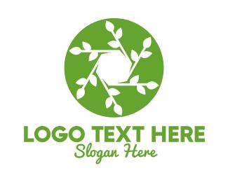 Cameraman - Hexagon Leaf Plant logo design