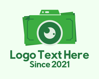 Monetary - Dollar Bills Camera  logo design