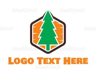 Conservation - Hexagon Pine logo design
