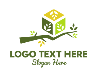 Autumn - Branch Box logo design