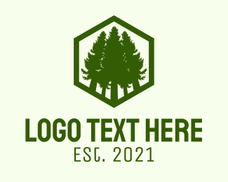 Camping Ground - Green Hexagon Forest Reserve logo design