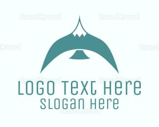 Bird - Blue Bird logo design
