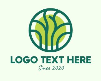 Natural Conservation - Green Eco Forest logo design