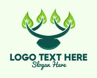 Branch - Growing Branch Leaves  logo design
