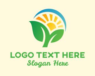 Corn - Farming Agriculture Sun logo design