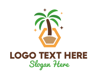 Spring Break - Hexagon Palm Tree logo design