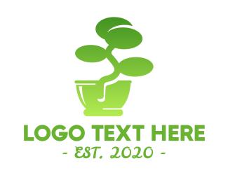 Bonsai - Green Bonsai  logo design