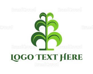 Botanical - Green Maize logo design