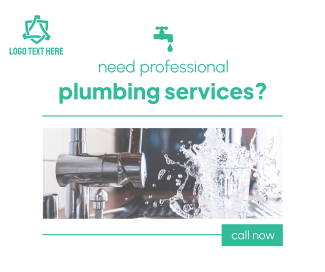 Professional Plumbing Services Facebook post