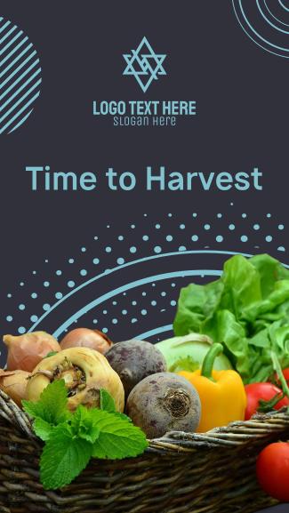 Harvest Vegetables Facebook story