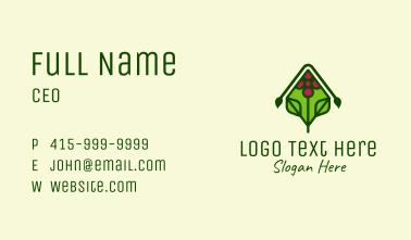 Organic Grape Vineyard Business Card