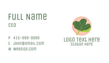 Fiddle Leaf Fig Plant  Business Card