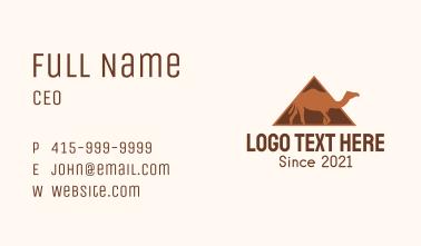Egypt Camel Pyramid  Business Card