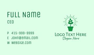 Green Coffee Bean Plant Business Card